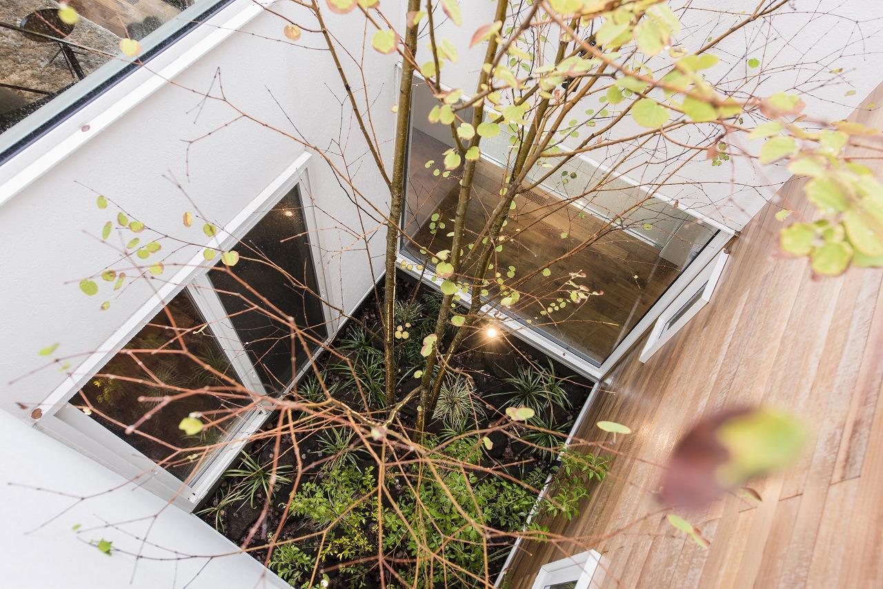 中庭が生み出す回遊動線のあるプラン